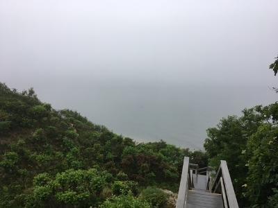 Foggy steps.jpeg