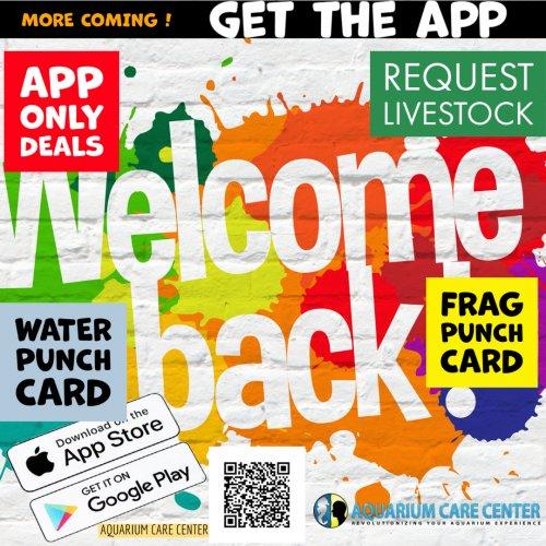 APP IS BACK.jpg